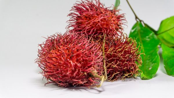 rambutan superfood riarecommends